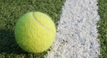 tennis-ball-1437546